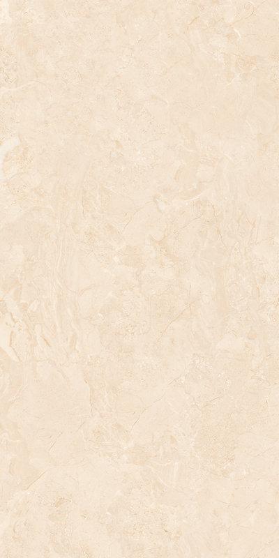 Y1PG02AG